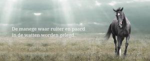 paard_slogans